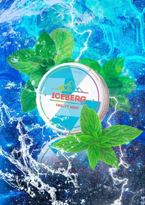 iceberg frosty mint nicotine pouches snus nicopods the pod block